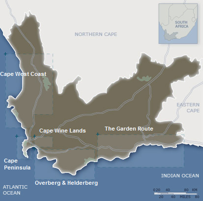 Cape Town Accommodation | Hotels | Tours | Safari | Book
